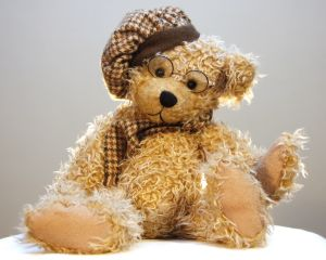 IT Training teddy bear